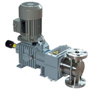 Metering Pumps | Blackline RH Series
