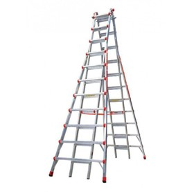 Telescopic Access Ladder Model 21 | Skyscraper