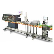 Bagging Machine | 3025-C
