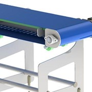 Hygenius™ - wash down conveyor