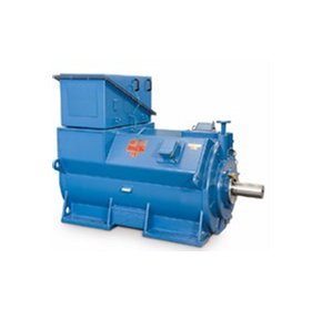 Low and High Voltage Machines | WEG Electric | Motor & Gearbox