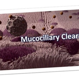How Does Mucociliary Clearance Work – Mucus Clearance and Removal