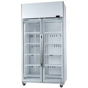 Glass Chillers|Skope 2 Door Chiller
