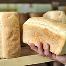 Neural tube defects decrease since folic acid added to bread