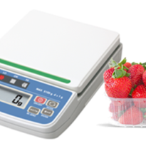 Bench & Packing Scales | HT-CL Series Compact Scale