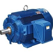 Low Voltage 3PH Electric Motors - MAXe3 Premium Heavy Duty