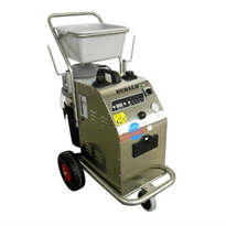 Steam Cleaning Generator Machine | Dedalo