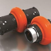 Rexnord Omega Elastomeric Couplings E & ES