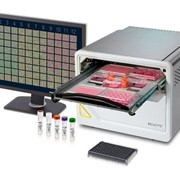 Incucyte SX5 Live-Cell Analysis Systems