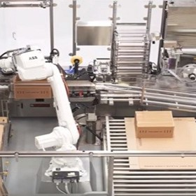 ADDE | Robotic Case Packer and Palletiser (Custom Design)