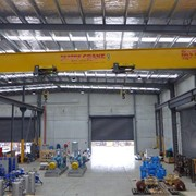 Dual hoist Single girder overhead crane