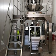 Nexus Multi-Head Weigher System + VFFS | NX-260