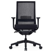 Ergonomic Office Chair | A One