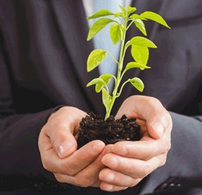 Certificate in Workplace Environmental Responsibilities