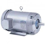 Stainless Steel Washdown IP66 Three Phase Motor