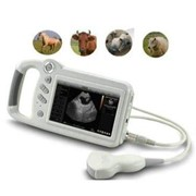 Veterinary Ultrasound Scanner L80 Compact Touch Screen