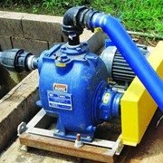 Piggery reduces both maintenance time and costs with new wastewater pumps