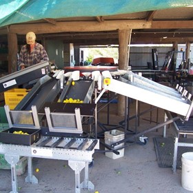 KW Electronic Weight Graders