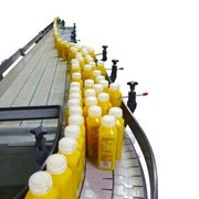 Single File Conveyors