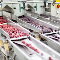 Food for thought: avoiding contaminants in food processing & packaging