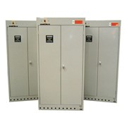 Drysafe Industrial Drying Cabinet