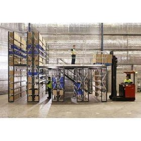 Longspan Shelving Supported Raised Storage Areas