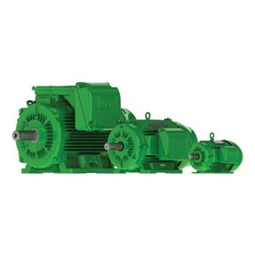 Metric 415V 8-Pole Electric Motor | L2B W22EXD