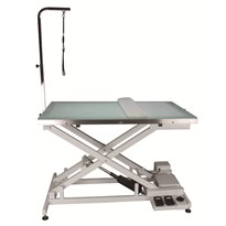 Veterinary Electric Lift Table with Light