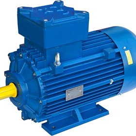 Explosion Proof Single and Three Phase Motors