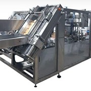 Wraparound Case Packer