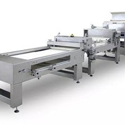 6 Rows Dough Divider & Rounder Machine with Moulder and Traying System