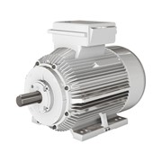 Low Voltage IEC Motors for Definite Purpose