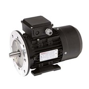 TECO Monarch Alloy Three Phase Motor