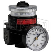 Air Regulator | FRL's R21 Dial R21-06RG