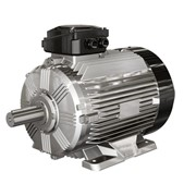 Low Voltage IEC Motors