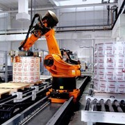 Robotic Palletising Solution