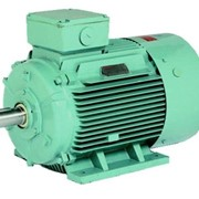 Monarch 3PH Electric Motors