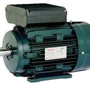 Single Phase Induction Motor | Monarch | Chain & Drives
