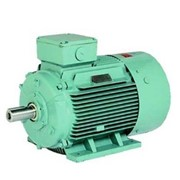 TECO Monarch Severe Duty Motor