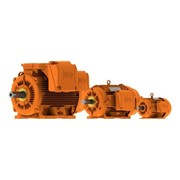 Metric Mining Electric Motor | LTE16B W22M