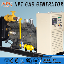 CE Approved 50kw Biogas Generator