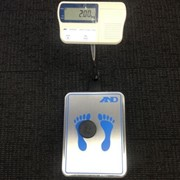 Personal Weighing Scale | PW-200KGL
