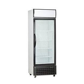 1 Door Upright Commercial Display Freezer