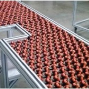 Conveyor Transfer Tables Rollers