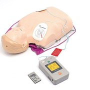 Laerdal Little Anne AED CPR Manikin