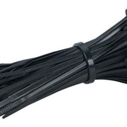 LAPP Cable Ties