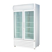 F.E.D Thermaster Double Glass Door 730L Drink Fridge | LG-730GE