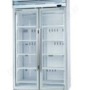 Freezer (Upright) | VF1000X 2-Door Freezer