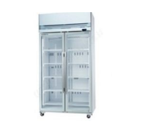 Freezer (Upright) | SKOPE VF1000X 2-Door Freezer