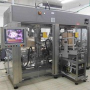Integrated Multipack Case Packer